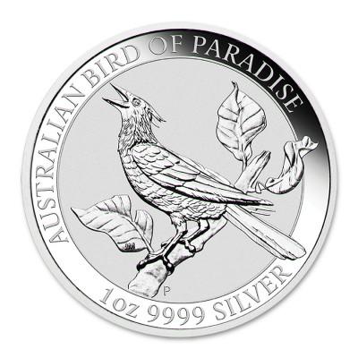 Bird of Paradise 2019